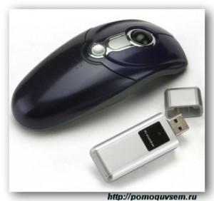 Мышь и пульт дистанционного управления